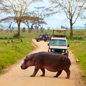 Транспорт в Танзании